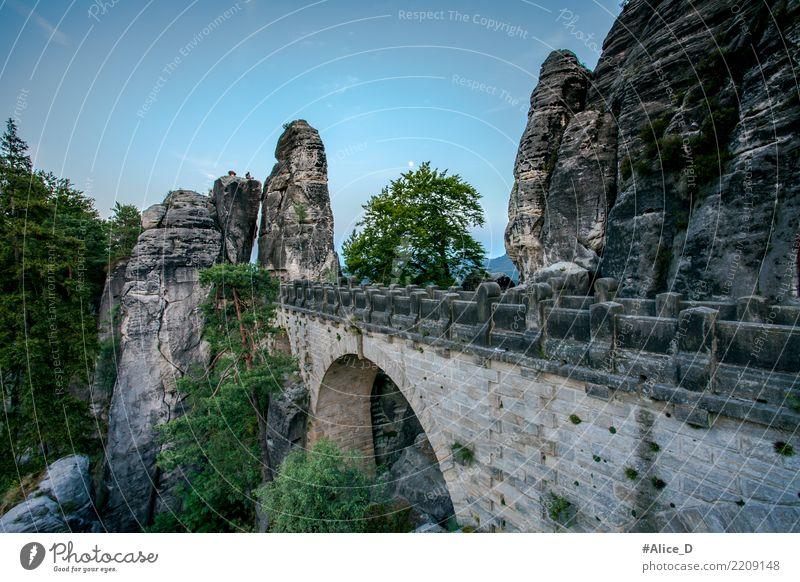 Basteibrücke in der Dämmerung Natur Ferien & Urlaub & Reisen blau Sommer grün Landschaft Baum Berge u. Gebirge Umwelt natürlich Stein Deutschland grau Felsen