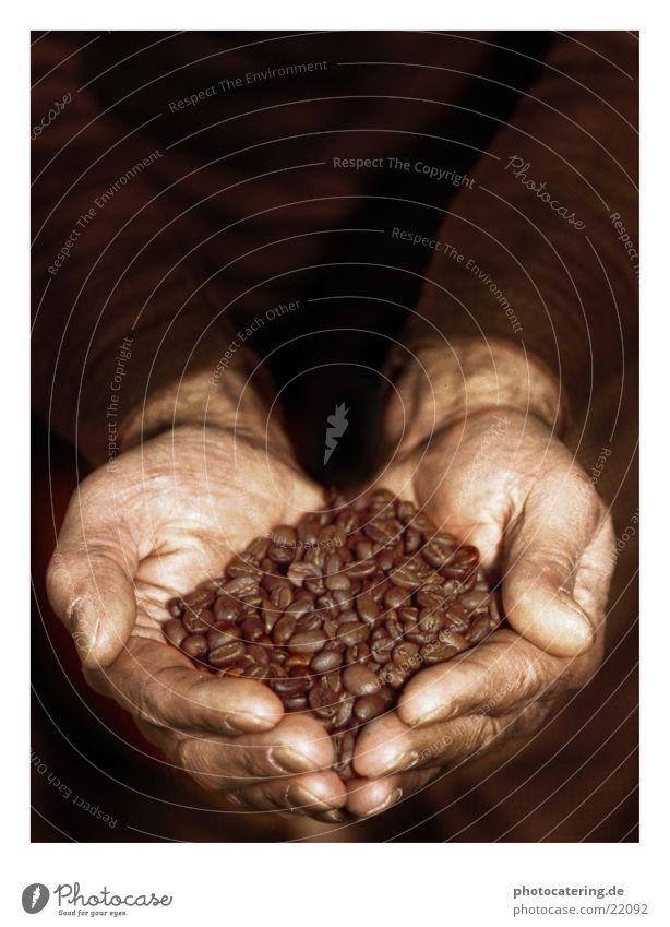 kaffe Dorf Café Hand Bohnen braun Arbeit & Erwerbstätigkeit Ernährung