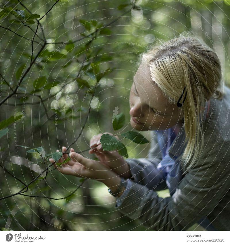 Berührung Mensch Natur Jugendliche schön Sommer Blatt ruhig Gesicht Erholung Leben Freiheit Umwelt träumen Gesundheit Zufriedenheit blond