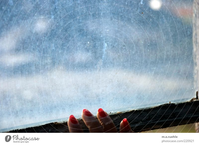 du liebst mich nicht Mensch Jugendliche rot feminin warten dreckig Erwachsene Glas Finger Sehnsucht Abschied Fensterscheibe Fingernagel Liebeskummer matt