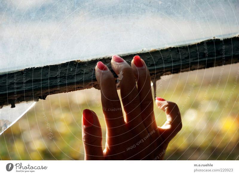 halt dich fest Mensch Hand Jugendliche Einsamkeit feminin Erwachsene Finger Sehnsucht Schmerz festhalten Fensterscheibe Am Rand Sorge Fingernagel Halt