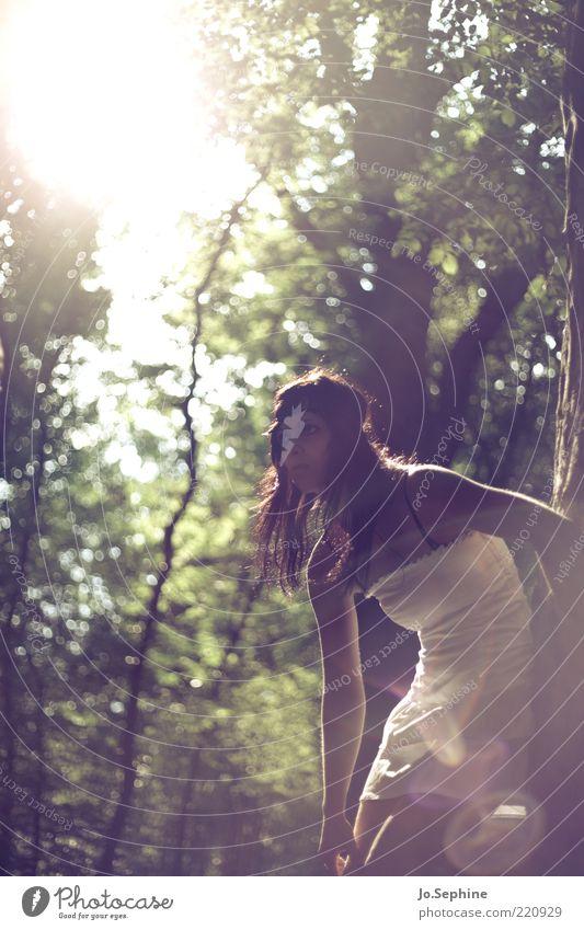 Mielikki feminin Junge Frau Jugendliche 1 Mensch 18-30 Jahre Erwachsene Natur Wald Kleid beobachten braun grün Stimmung Erwartung Halbprofil langhaarig brünett