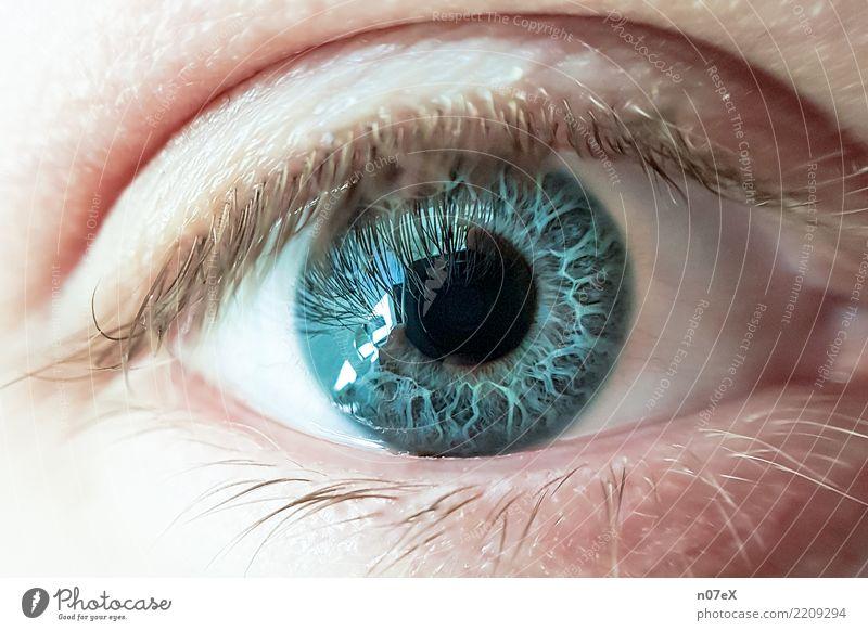 behind blue eyes schön Fotokamera maskulin Mann Erwachsene Auge Kunst Wasser Blick träumen authentisch einzigartig nah Originalität blau Gefühle Wahrheit