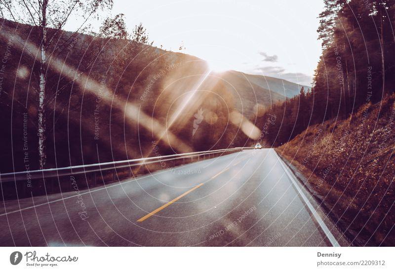 Norway road Ferien & Urlaub & Reisen Ausflug Abenteuer Ferne Natur Landschaft Sonne Schönes Wetter Hügel Berge u. Gebirge Straße fahren authentisch