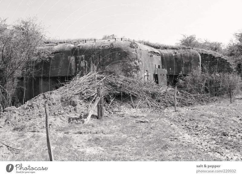 BUNKER - FRANKREICH Feld Ruine Wege & Pfade Bunker Kriegsschauplatz Schwarzweißfoto Außenaufnahme Detailaufnahme Hintergrund neutral Tag Sträucher