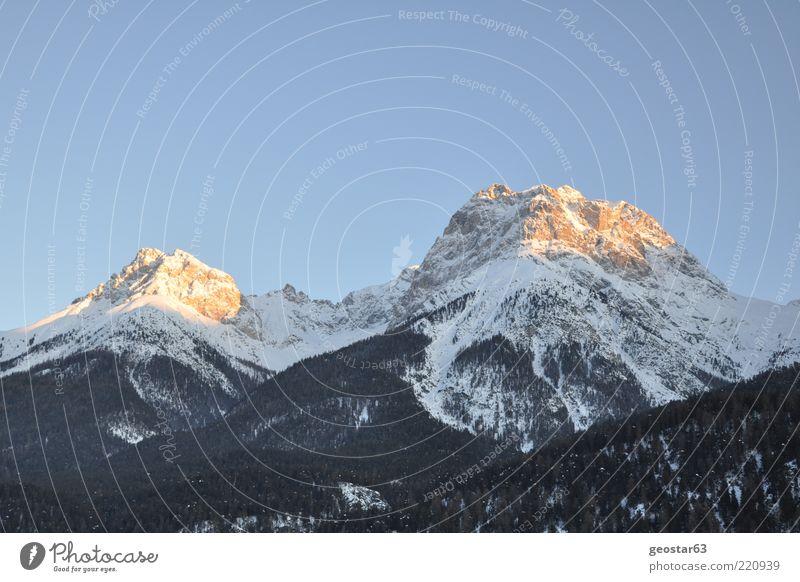 Berge in Graubünden (Schweiz) schön Ferien & Urlaub & Reisen Winter Berge u. Gebirge Landschaft Alpen Gipfel Schönes Wetter Blauer Himmel himmelblau Wolkenloser Himmel Schneebedeckte Gipfel Bergwald Klarer Himmel Vor hellem Hintergrund