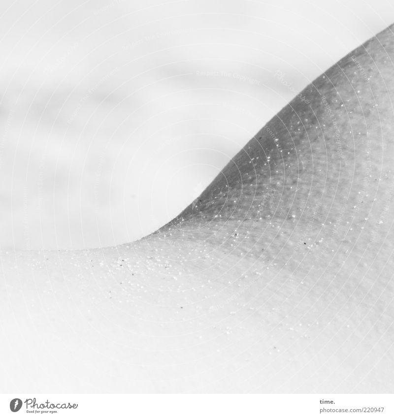 Good Vibrations Haut Sand frieren hell grau Verlauf Körperteile geschwungen Kurve Gänsehaut salzig Strand Schwarzweißfoto Außenaufnahme Nahaufnahme Tag Schatten