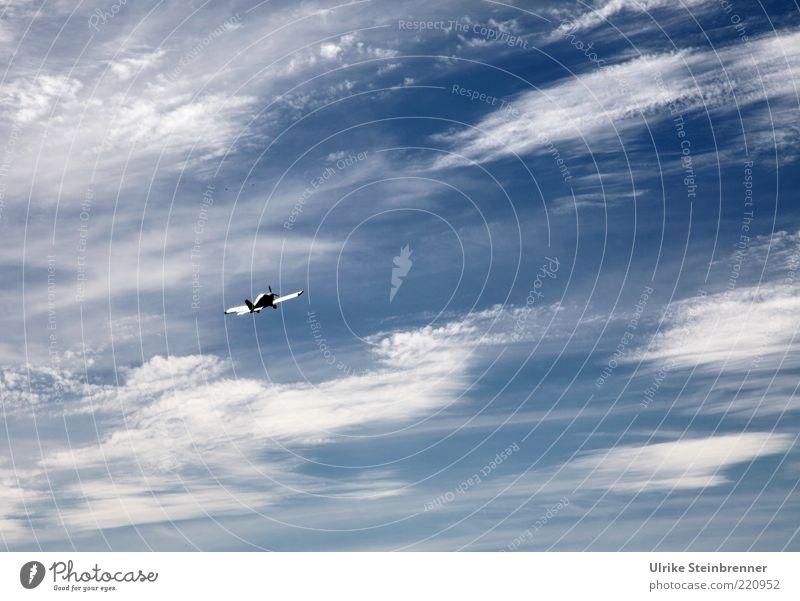 Up, up and away! Himmel Wolken oben Bewegung Freiheit Luft Zufriedenheit Flugzeug elegant fliegen frei hoch Geschwindigkeit ästhetisch Luftverkehr