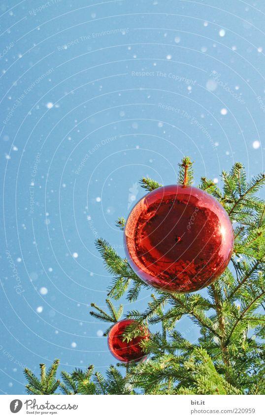 Schneeflöckchen... (V) Himmel Weihnachten & Advent rot Winter kalt Glück Feste & Feiern Stimmung Schneefall glänzend Dekoration & Verzierung Romantik fallen Kitsch Tradition Weihnachtsbaum