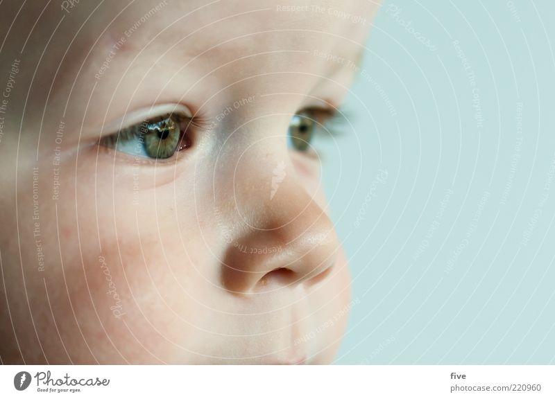 noch viel vor sich Mensch Kind grün schön Auge Gefühle Junge Kopf klein Glück träumen Kindheit Zufriedenheit Nase Fröhlichkeit Zukunft