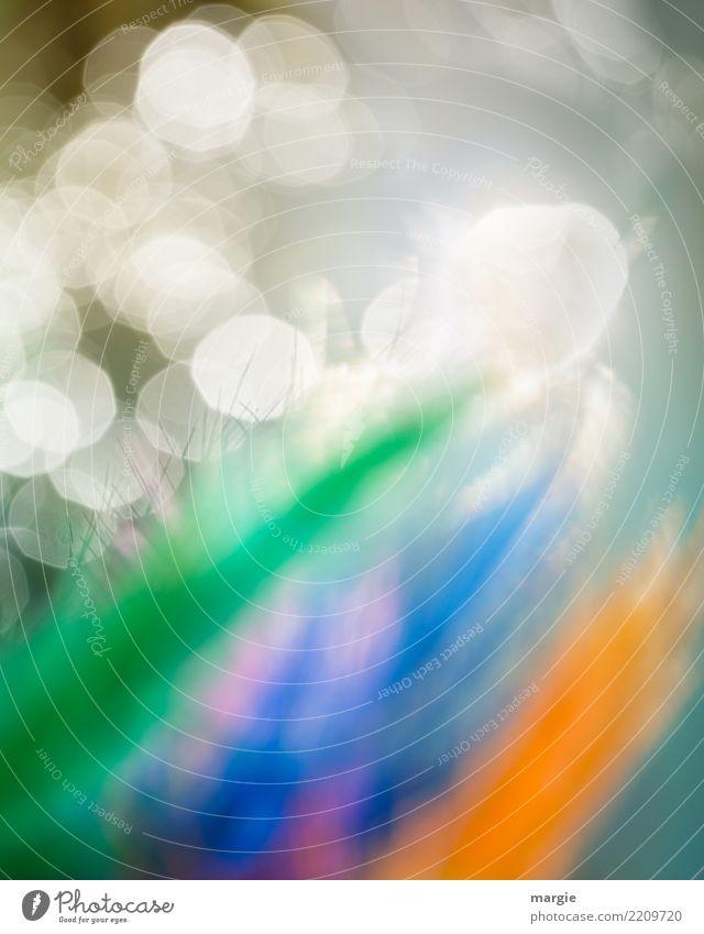 Explosions! Abstraktes Licht! Freizeit & Hobby Maler Natur Pflanze Tier Sonne Sonnenlicht Blume Blatt Blüte Grünpflanze Nutzpflanze Garten Park mehrfarbig weiß