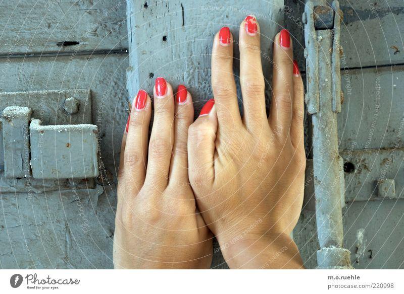 zart versperrt Mensch feminin Junge Frau Jugendliche Hand Finger 1 18-30 Jahre Erwachsene Holz berühren schön grau Tatkraft zuhalten schließen blockieren