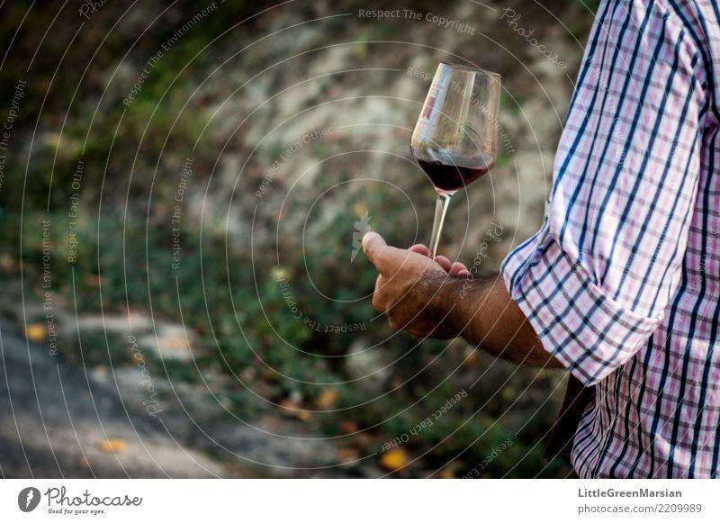 Eins für die Straße Mensch Ferien & Urlaub & Reisen Mann Hand Freude Erwachsene Herbst Stil gehen maskulin Behaarung Arme Lebensfreude Finger Italien Getränk