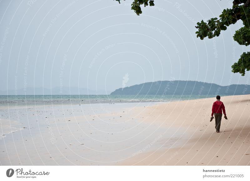 Am Strand Ferien & Urlaub & Reisen Freiheit Sommerurlaub Meer 1 Mensch Sand schlechtes Wetter Küste Jacke gehen Einsamkeit Ebbe Monsun Farbfoto