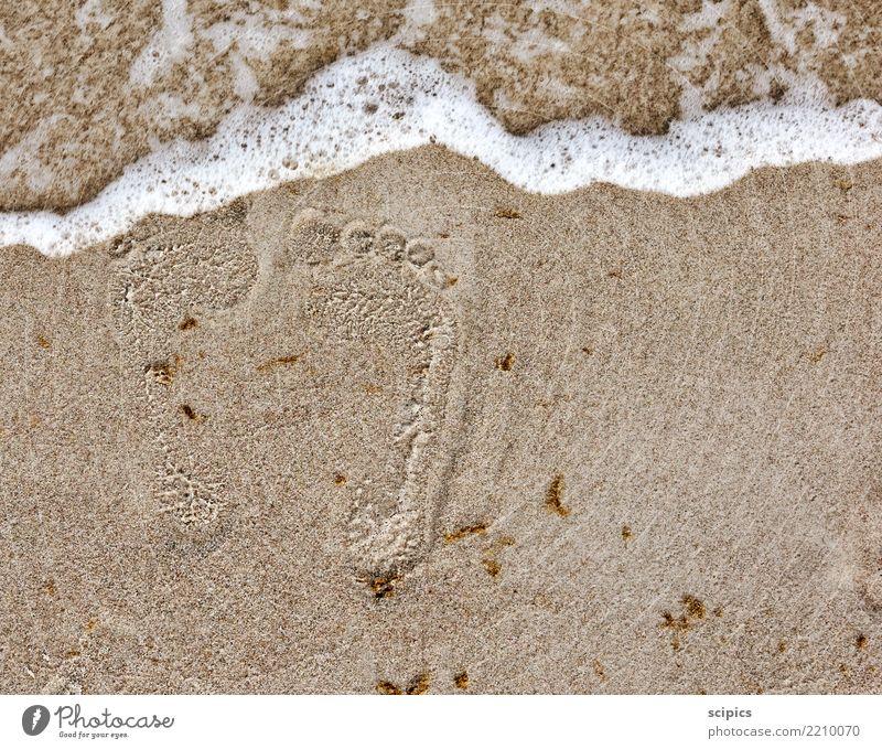 Spuren im Sand Körper Gesundheit Wellness Leben Erholung ruhig Freizeit & Hobby Sommer Sommerurlaub Strand Meer Wellen Yoga Umwelt Natur Landschaft Wasser Klima
