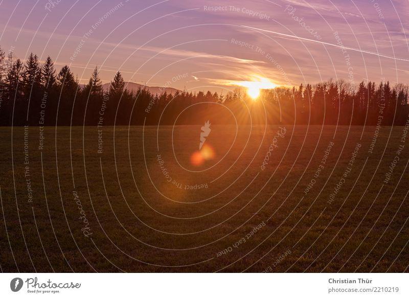 Morgensonne Natur Ferien & Urlaub & Reisen Sommer Landschaft Baum Erholung Wolken ruhig Ferne Wald Leben Umwelt Gras Tourismus Freiheit Ausflug