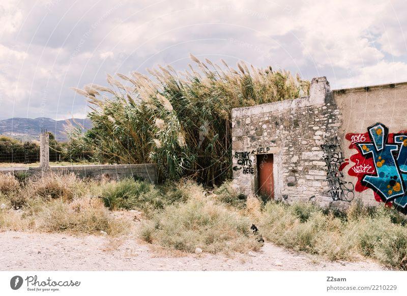 Katzenjammer Himmel Natur alt Sommer Landschaft Einsamkeit Wolken ruhig Umwelt Graffiti Gebäude Idylle Wind Sträucher Insel