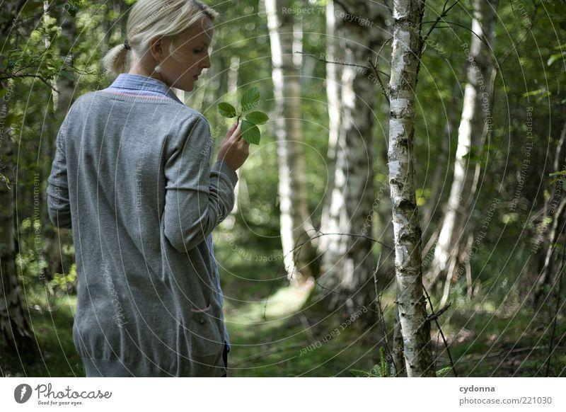 Moment Mensch Natur Jugendliche schön Sommer Blatt ruhig Wald Erholung Leben Umwelt Gefühle Stil Erwachsene träumen Zufriedenheit