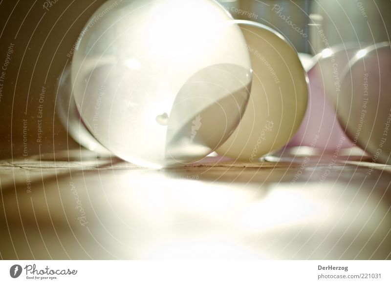 Staubige Sonnenballons ruhig Gefühle Design rund Spielzeug durchsichtig Holzfußboden Sonnenstrahlen Gegenlicht durchleuchtet