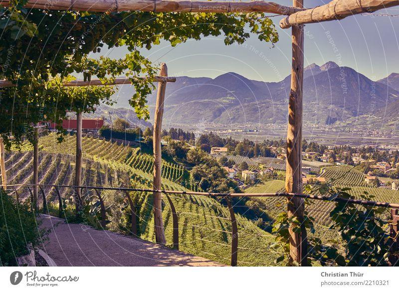Schenna Südtirol Leben harmonisch Wohlgefühl Zufriedenheit ruhig Ferien & Urlaub & Reisen Tourismus Ausflug Abenteuer Sightseeing Städtereise Sommer
