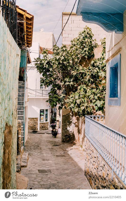 ruhige läge Sommer Baum Haus Einsamkeit Architektur natürlich Tourismus Idylle Insel Altstadt Dorf Gelassenheit Tradition exotisch mediterran