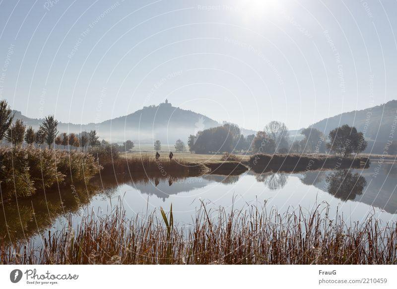 Herbstspaziergang maskulin 2 Mensch Natur Landschaft Wasser Himmel Sonne Schönes Wetter Nebel Baum Sträucher Schilfrohr Wald Berge u. Gebirge See