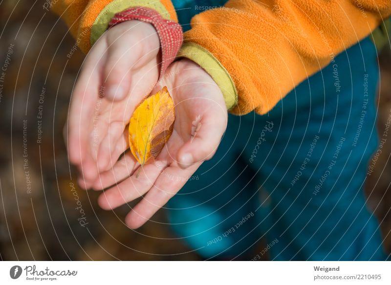 Kostbarkeit Gesundheit Wellness Leben harmonisch Wohlgefühl Zufriedenheit Sinnesorgane Duft Erntedankfest Kindergarten Kleinkind Mädchen Junge Kindheit 1 Mensch