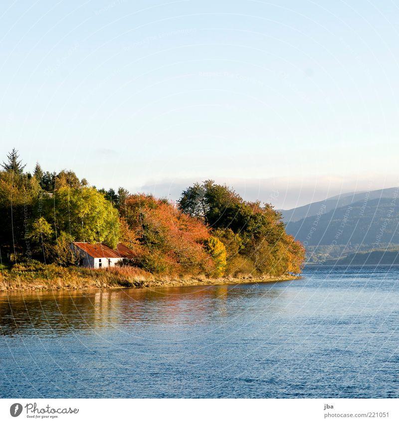 Haus am Meer Wasser alt Baum Winter Ferien & Urlaub & Reisen ruhig Ferne Wald Erholung Berge u. Gebirge Freiheit Landschaft Küste Umwelt