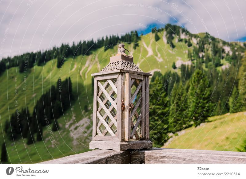 Laterndl Berge u. Gebirge wandern Natur Landschaft Himmel Sommer Schönes Wetter Baum Sträucher Wald Alpen Gipfel Kuh einfach groß Kitsch natürlich Originalität