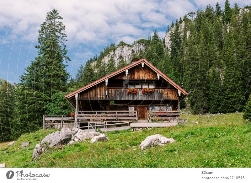 Eigenheim Berge u. Gebirge wandern Natur Landschaft Sommer Schönes Wetter Wald Alpen Haus Einfamilienhaus Hütte einfach Kitsch Einsamkeit Erholung
