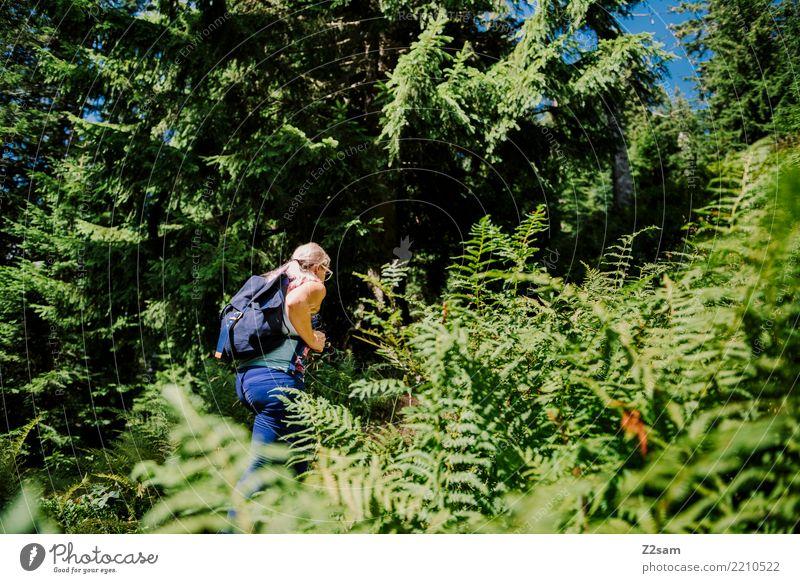 Aufstieg Ferien & Urlaub & Reisen Ausflug Abenteuer wandern feminin Junge Frau Jugendliche 18-30 Jahre Erwachsene Umwelt Natur Landschaft Sommer Schönes Wetter