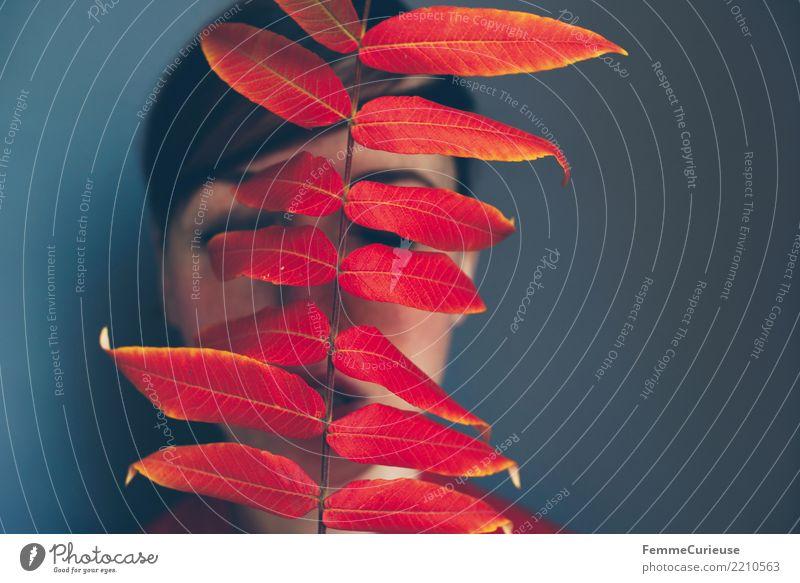 Autumn 09 elegant feminin Junge Frau Jugendliche Erwachsene 1 Mensch 18-30 Jahre 30-45 Jahre Naturliebe Farbe rot Grauwert verdeckt verstecken geheimnisvoll
