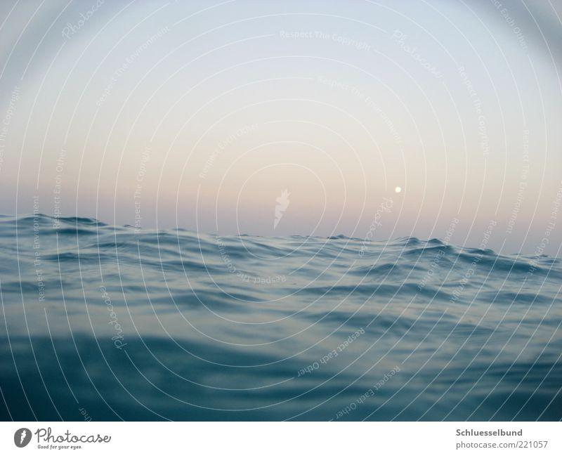 hautnah Ferien & Urlaub & Reisen Sommerurlaub Wellen Wasser Himmel Horizont Mond Wind Meer Schwimmen & Baden entdecken schaukeln außergewöhnlich elegant frisch