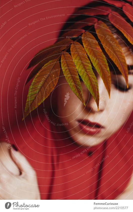 Autumn 19 feminin Junge Frau Jugendliche Erwachsene Mensch 18-30 Jahre 30-45 Jahre Natur schön Herbst herbstlich Herbstlaub Herbstfärbung Herbstbeginn
