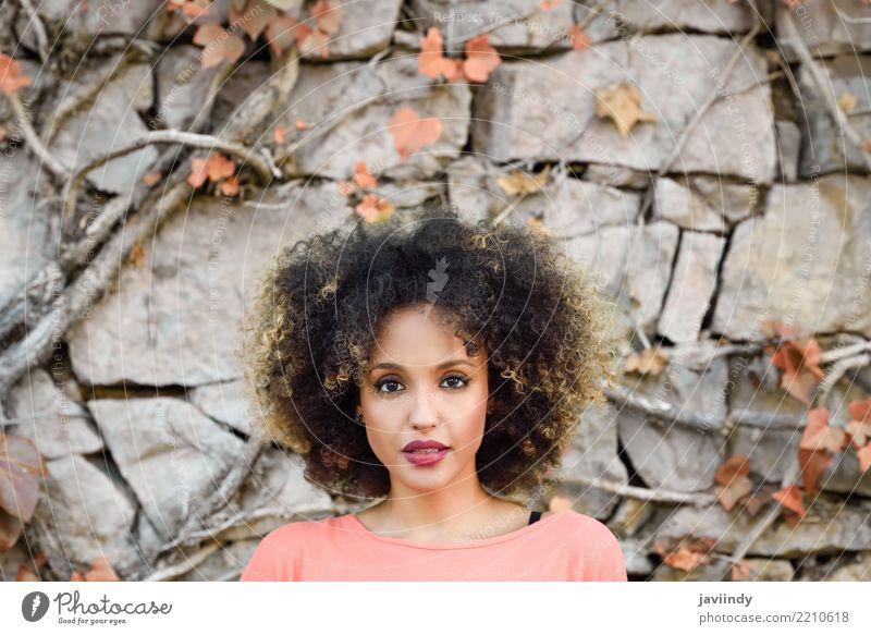 Gemischte Frau mit Afro-Frisur, die an einer Stadtmauer steht. Lifestyle Stil schön Haare & Frisuren Gesicht Mensch feminin Junge Frau Jugendliche Erwachsene 1