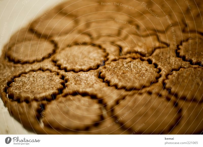 Nervenkekse [mit Rezept] Lebensmittel Teigwaren Backwaren Süßwaren Plätzchen Ernährung Slowfood harmonisch lecker braun Stern (Symbol) flach Farbfoto