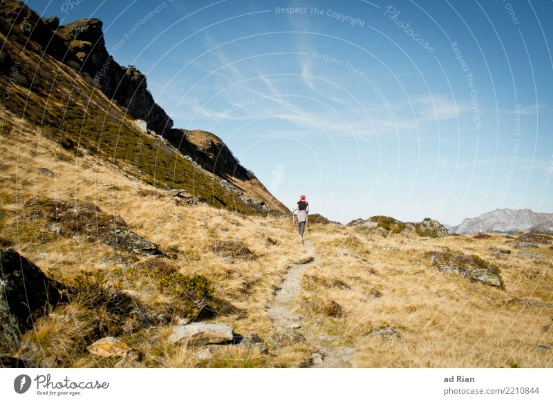 Wanderwetter VII Frau Mensch Natur Pflanze Landschaft Tier Berge u. Gebirge Erwachsene Umwelt Herbst feminin Bewegung Sport Gras Felsen gehen