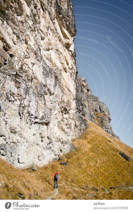 Wanderwetter VIII Ausflug Abenteuer Ferne Freiheit Berge u. Gebirge wandern feminin Frau Erwachsene 1 Mensch Umwelt Natur Landschaft Pflanze Tier