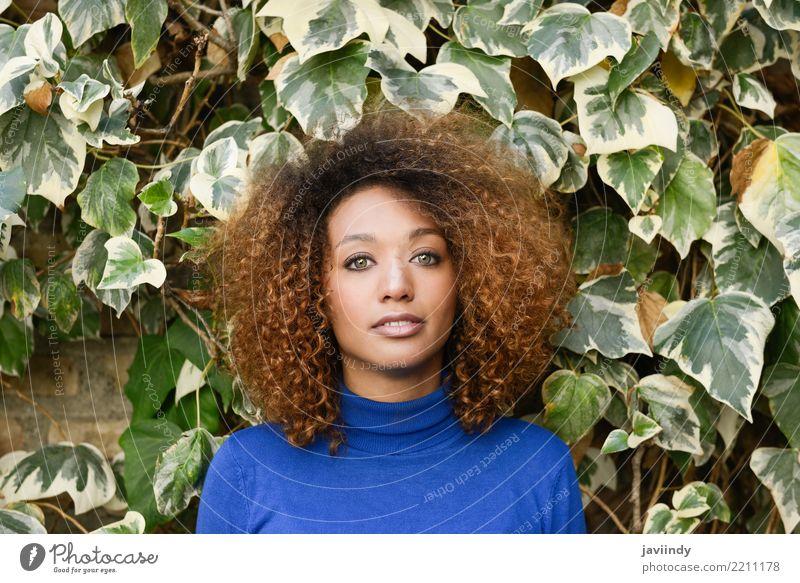 Schöne junge afroamerikanische Frau mit Afro-Frisur. Lifestyle elegant Stil schön Haare & Frisuren Gesicht Mensch feminin Junge Frau Jugendliche Erwachsene 1