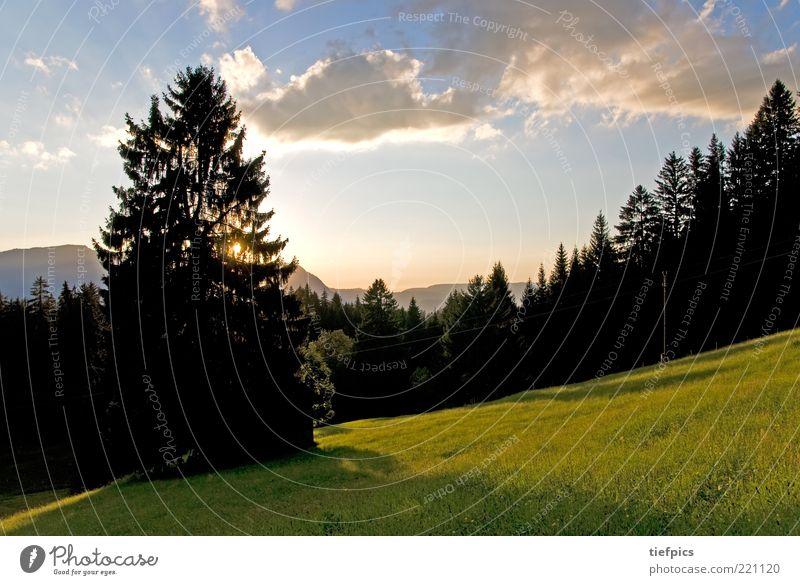 allgäu. Natur schön Himmel Baum grün blau Pflanze Wolken Wiese Gras Berge u. Gebirge Landschaft Umwelt Alpen Bayern Allgäu