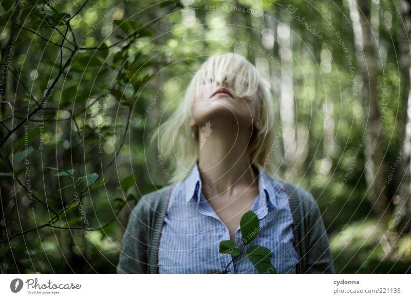 Strecken Mensch Natur Jugendliche schön Sommer Blatt ruhig Wald Leben Freiheit Umwelt Stil Bewegung Haare & Frisuren träumen Erwachsene