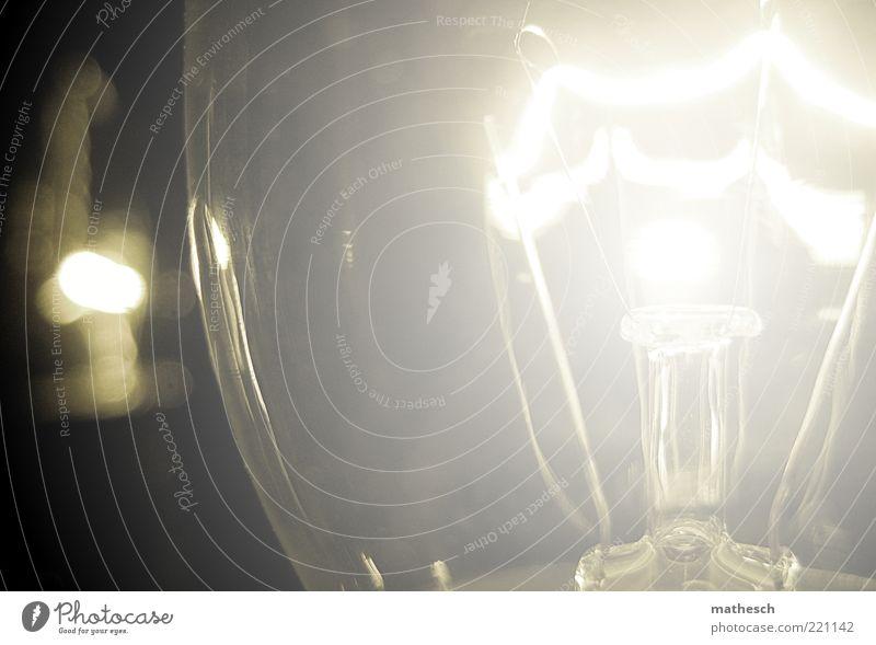 light Glühbirne Elektrizität Glas glänzend rund Wärme weiß Farbfoto Innenaufnahme Nahaufnahme Detailaufnahme Menschenleer Kunstlicht Licht Glühdraht Erfindung