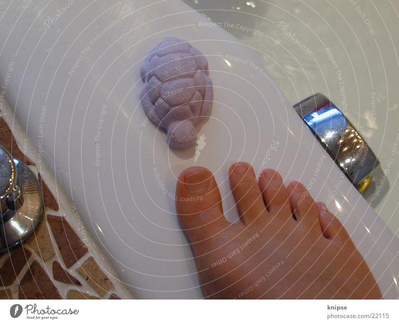 Begegnungen Fuß Dinge Badewanne Zehen Schildkröte