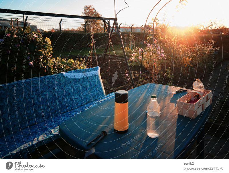 Abends im Garten Pflanze Baum Herbst Zufriedenheit Metall leuchten Idylle Sträucher Tisch Dinge Kunststoff Flasche Schaukel friedlich Feierabend