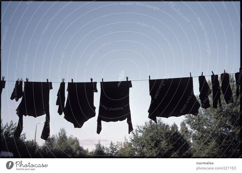clean & black schwarz Umwelt Garten Häusliches Leben Bekleidung T-Shirt Sauberkeit Hemd hängen Strümpfe Wolkenloser Himmel Pullover trocknen Wäscheleine