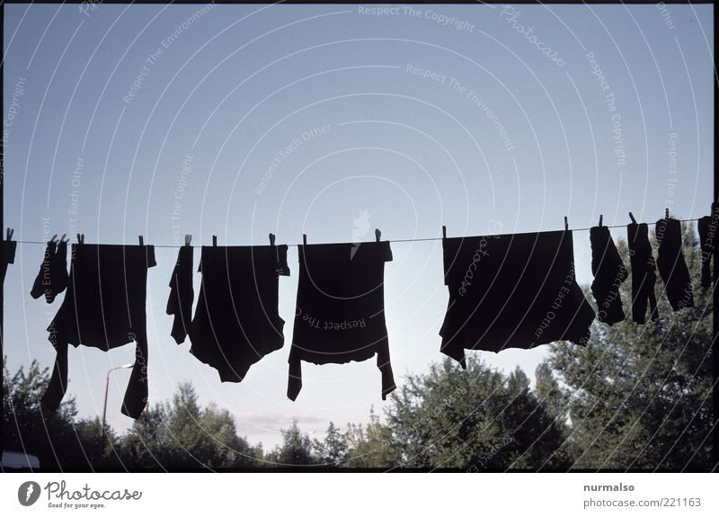 clean & black schwarz Umwelt Garten Häusliches Leben Bekleidung T-Shirt Sauberkeit Hemd hängen Strümpfe Wolkenloser Himmel Pullover trocknen Wäscheleine Umweltverschmutzung Haushaltsführung