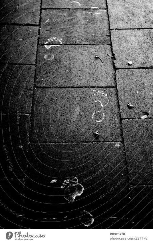 Footsteps Menschenleer Barfuß Beton entdecken frieren gehen laufen Armut dreckig kalt trashig schwarz Mut Angst Erfahrung Farben und Lacke Farbstoff