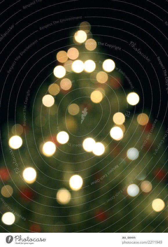 XMAS Tree Weihnachten & Advent grün weiß Baum Winter Lifestyle Gefühle Feste & Feiern Design leuchten modern glänzend elegant ästhetisch gold Freundlichkeit