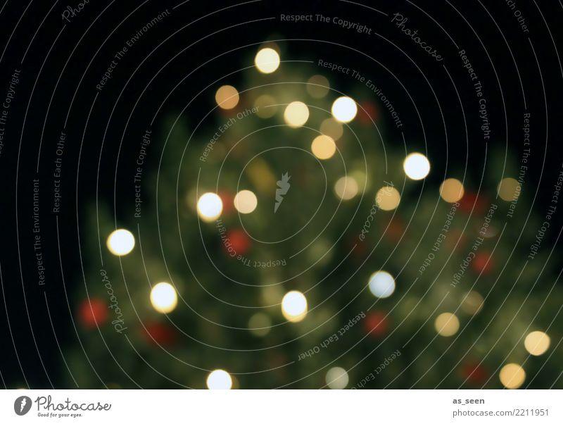 XMAS Tree Lifestyle Design Freude Feste & Feiern Weihnachten & Advent Baum Tanne Fichte glänzend leuchten ästhetisch trendy modern rund Wärme weich gold grün
