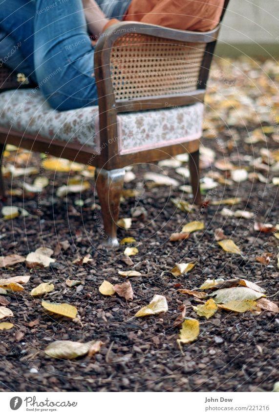Herbstgeflüster II Mensch Blatt ruhig Erholung Garten Zufriedenheit sitzen Freizeit & Hobby Jeanshose lesen Idylle Gelassenheit Möbel historisch Sessel bequem
